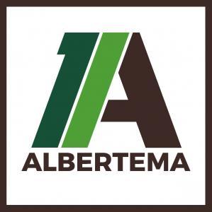 Albertema Peize